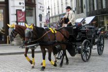 Fietstocht Passau-Wenen - Fiaker